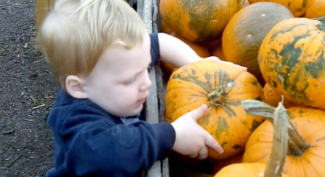 Beckett Discovers Linvilla Orchards