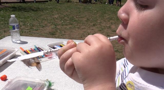 Beckett Enjoys School In Rose Valley May Fair